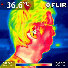 FLIR 赤外線サーモグラフィ 画像 人物を見た時の映像