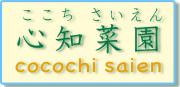 ハイポニカ 心知菜園 ココチサイエン_cocochi_saien_ハイポニカを使ったミニミニ水耕栽培キット