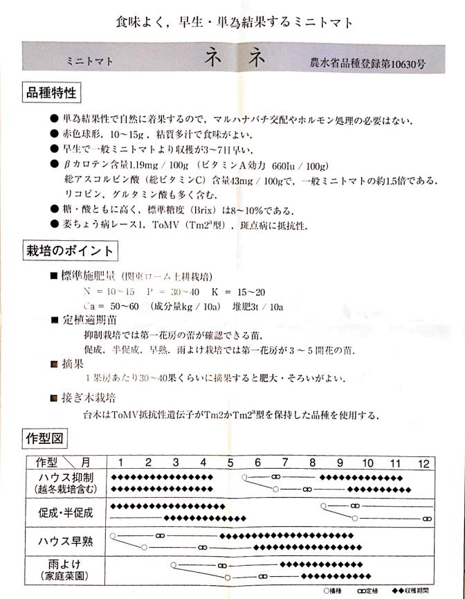 協和_水耕栽培用,ミニトマト種ネネ,水耕栽培装置のホームハイポニカ栽培に最適:情報パンフレット